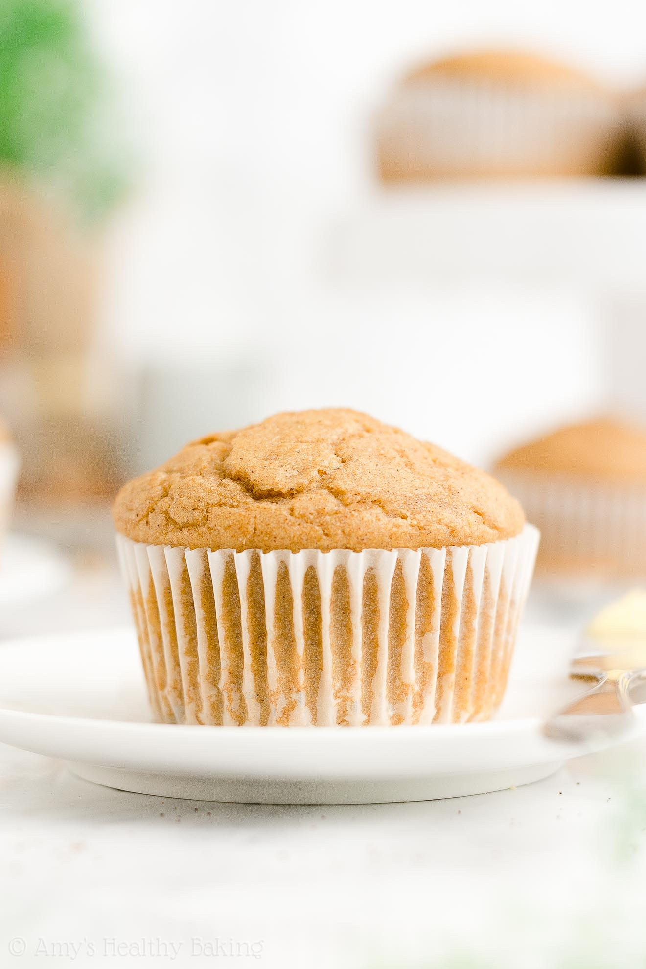 ULTIMATE Best Ever Easy Healthy Gluten Free No Sugar Spiced Eggnog Muffins