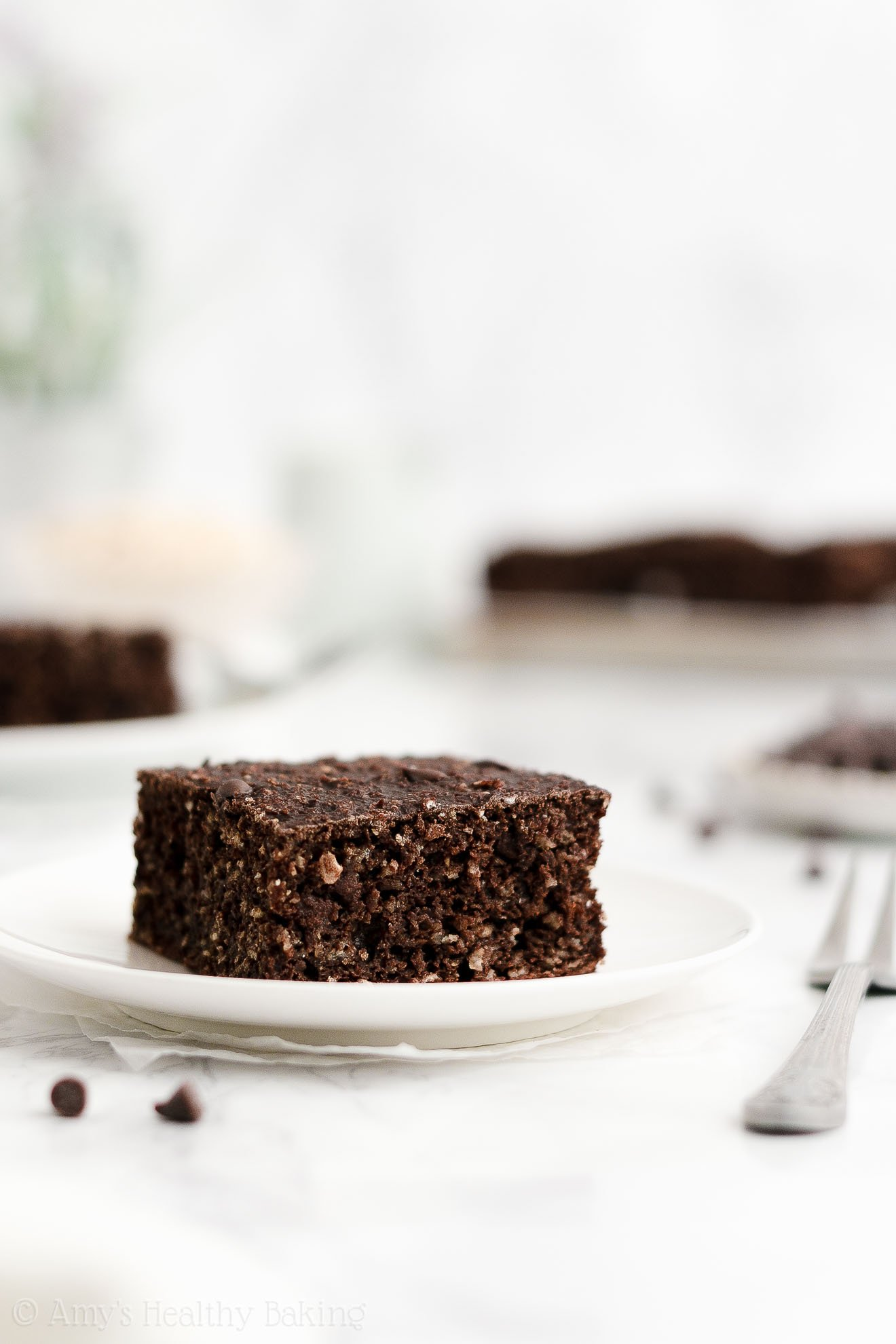 ULTIMATE Easy Healthy Weight Watchers Low Fat Double Chocolate Snack Cake
