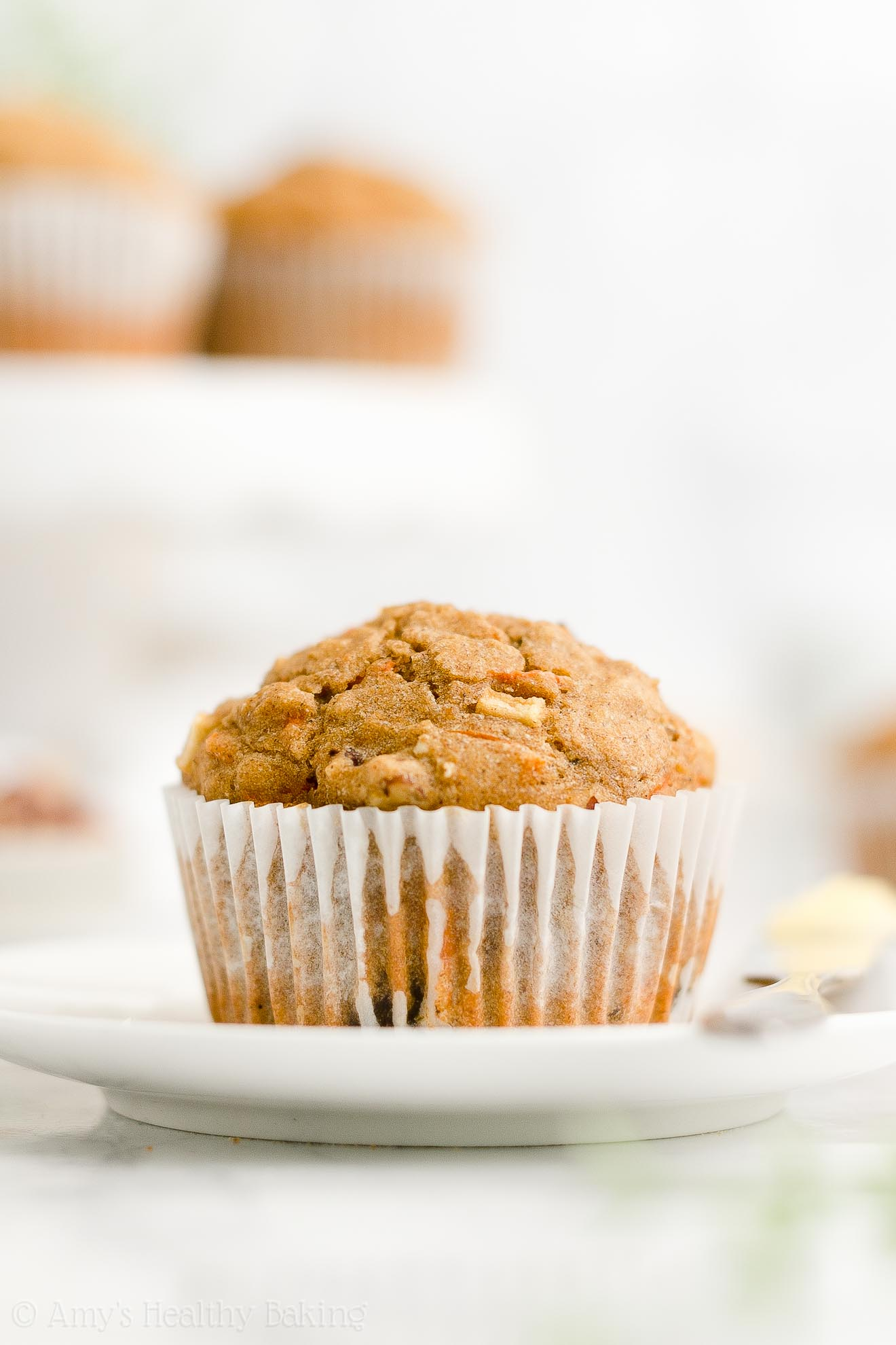 Best Easy Healthy Gluten Free Low Sugar Moist Morning Glory Oatmeal Muffins
