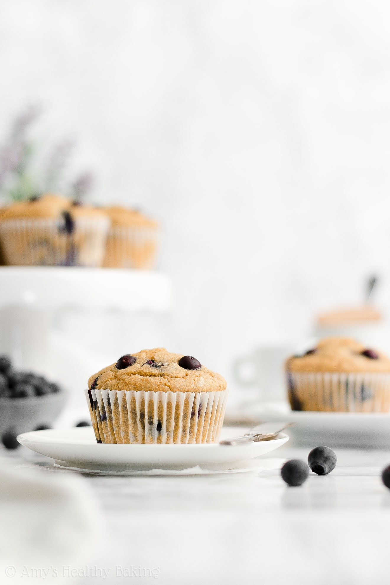 ULTIMATE Best Easy Healthy Whole Wheat Low Sugar Moist Blueberry Muffins