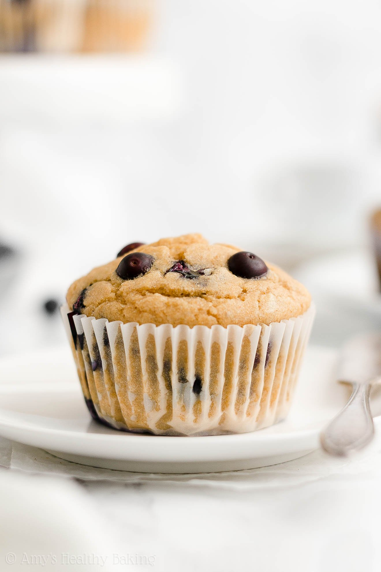 ULTIMATE Best Easy Healthy Gluten Free Low Sugar Yogurt Blueberry Muffins