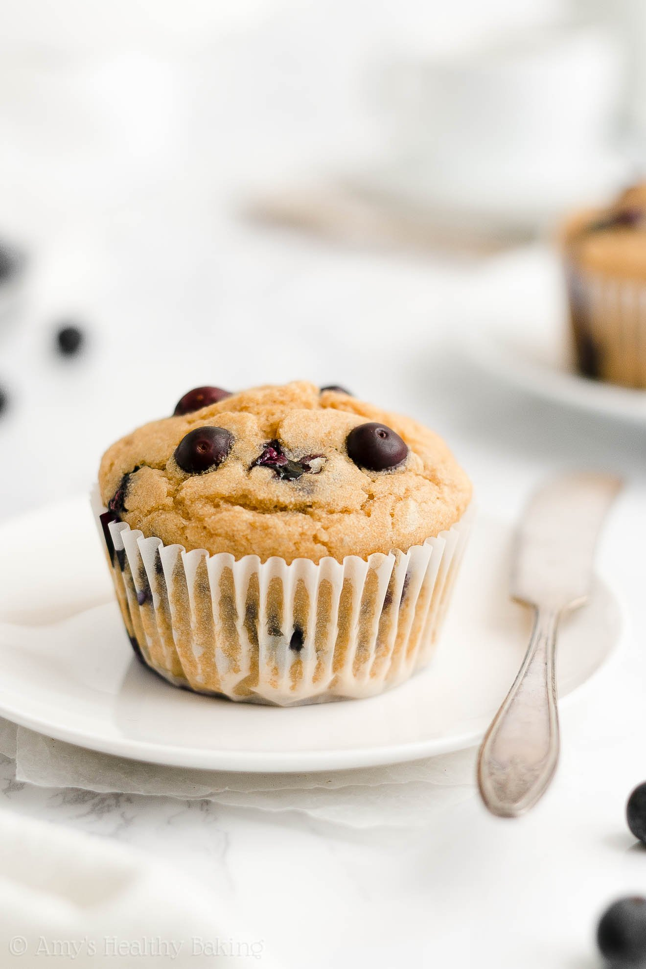 ULTIMATE Best Easy Healthy Gluten Free Sugar Free Low Fat Blueberry Muffins
