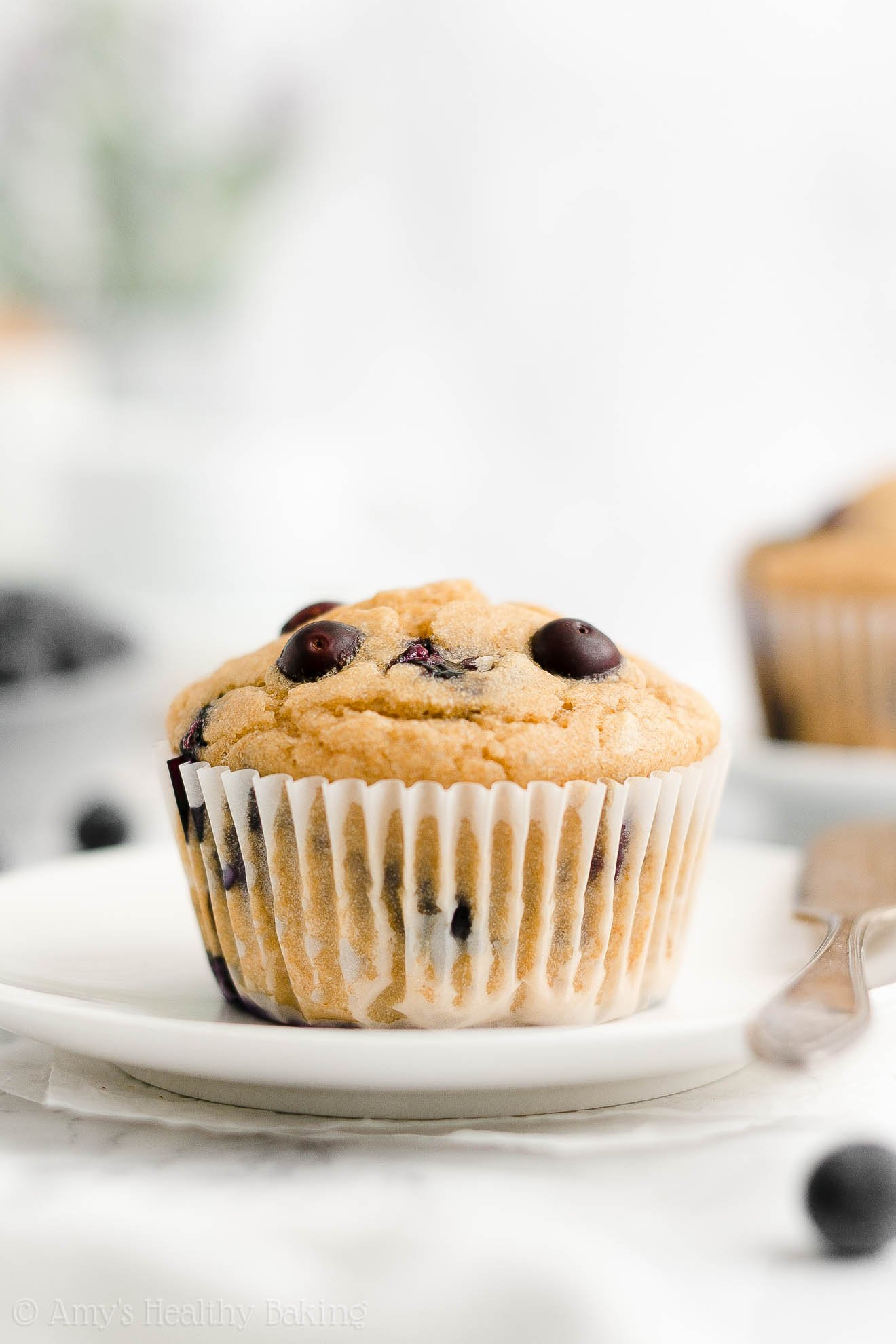 ULTIMATE Best Easy Healthy Whole Wheat Sugar Free Low Fat Blueberry Muffins