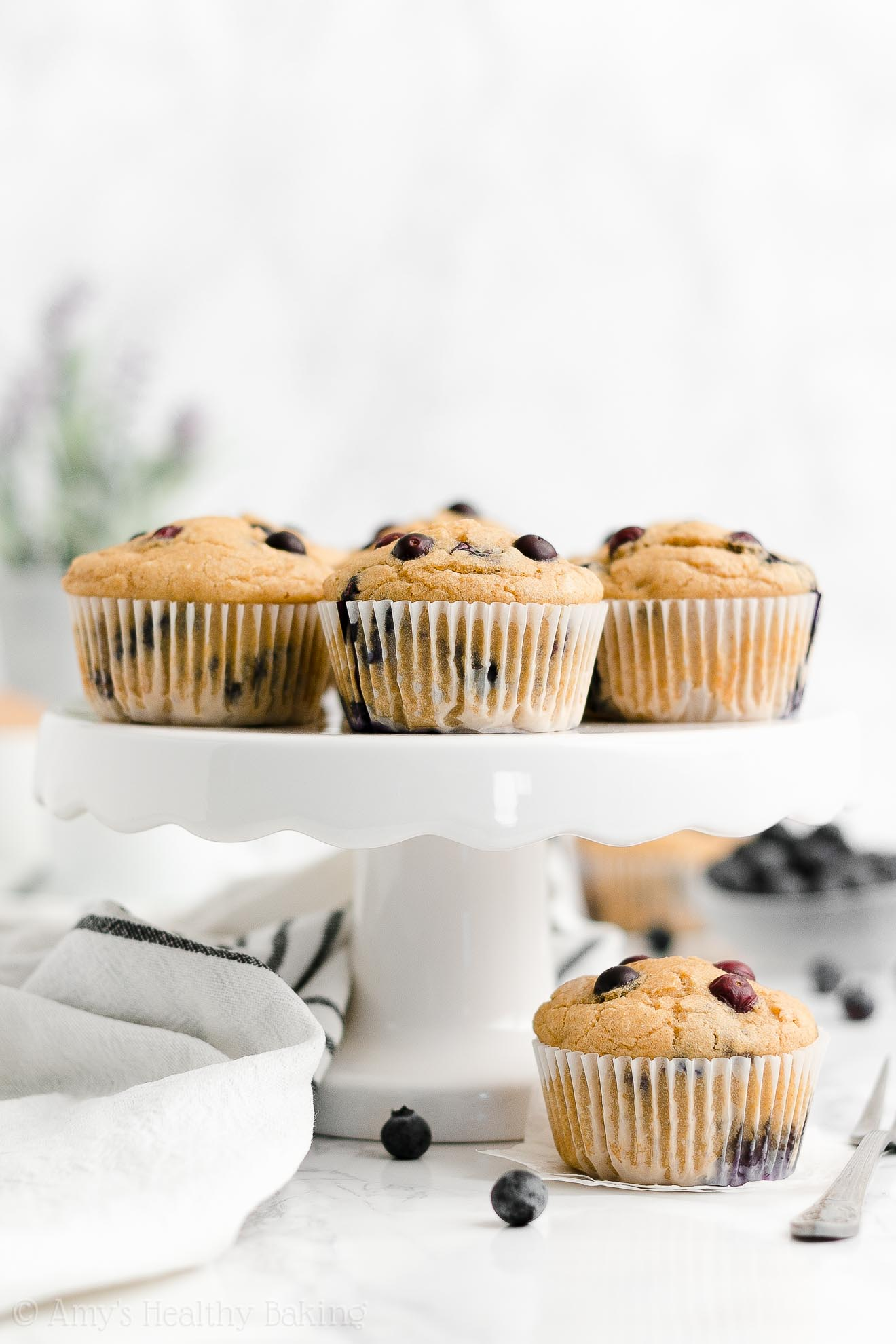ULTIMATE Best Easy Healthy Weight Watchers Low Calorie Blueberry Muffins