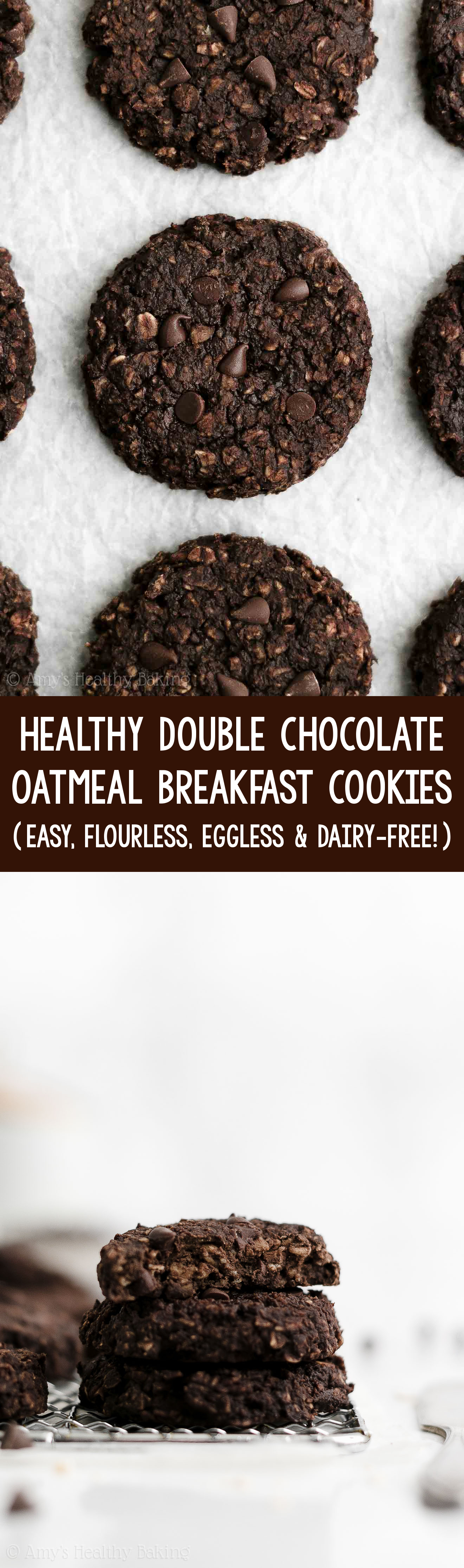 Best Easy Healthy Gluten Free Vegan Flourless Double Chocolate Oatmeal Breakfast Cookies For Kids