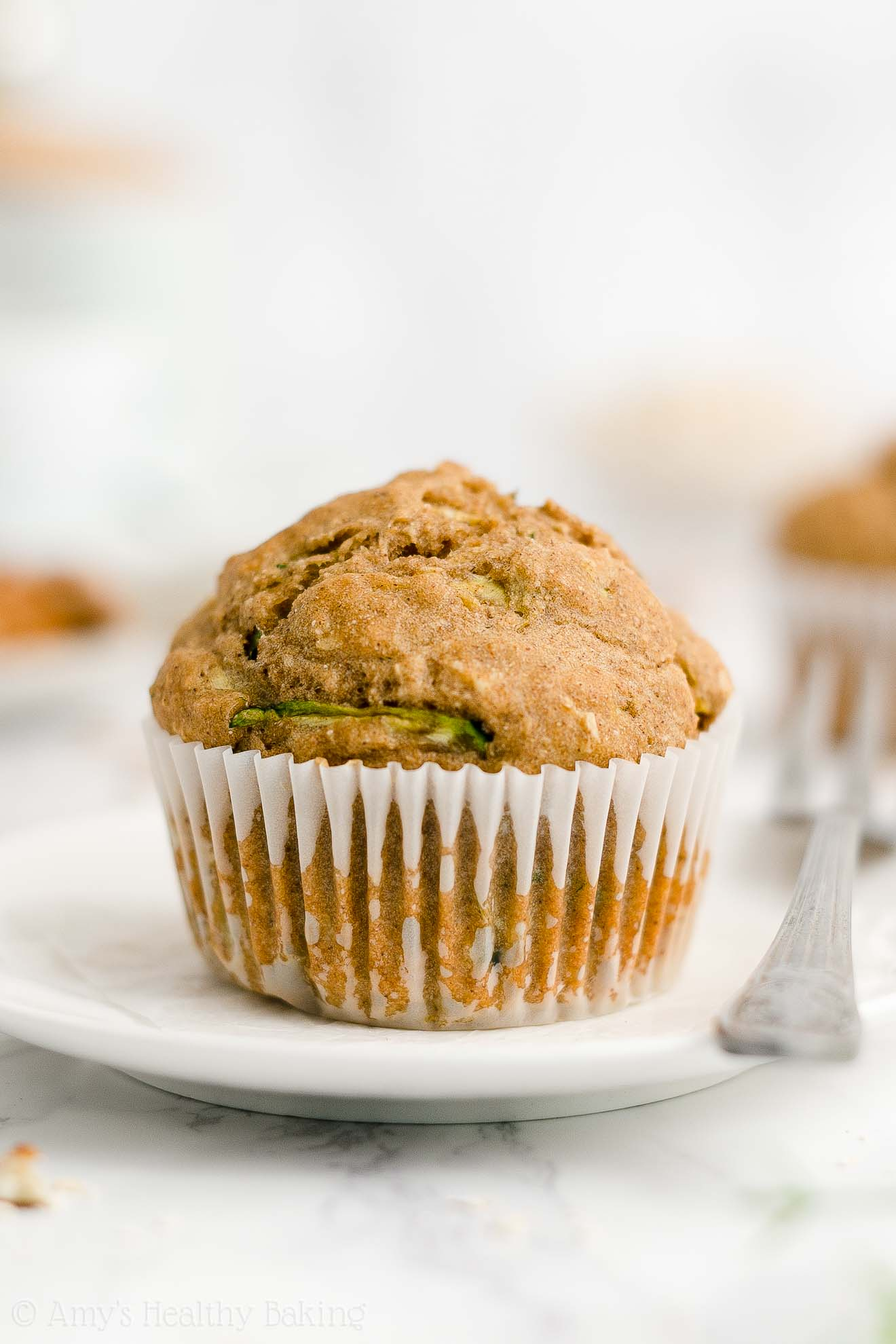 Best Easy Healthy Whole Wheat Low Fat Sugar Free Moist Zucchini Oatmeal Muffins