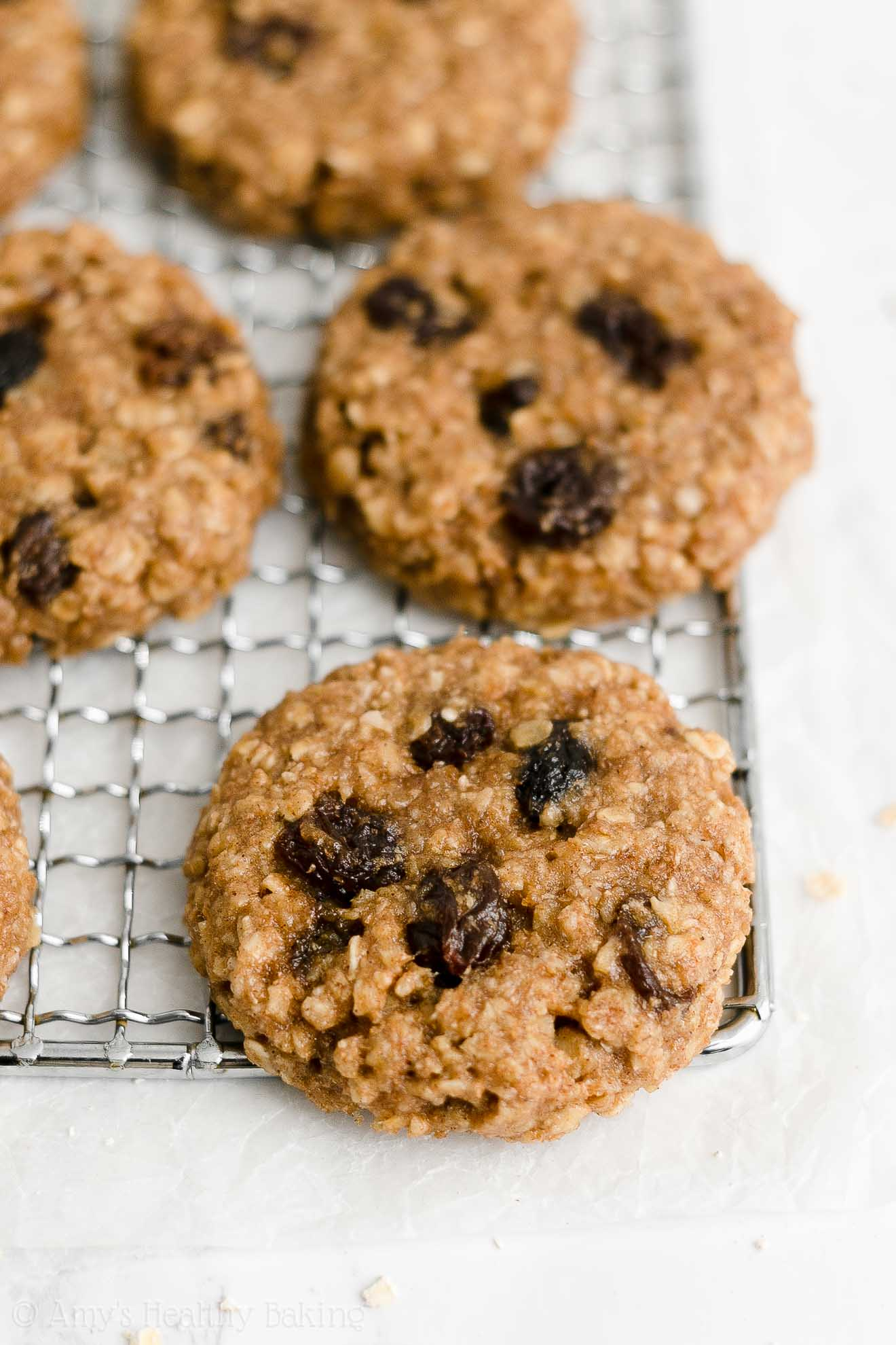 Healthy Vegan Flourless Eggless Applesauce Oatmeal Raisin Cookies No Butter