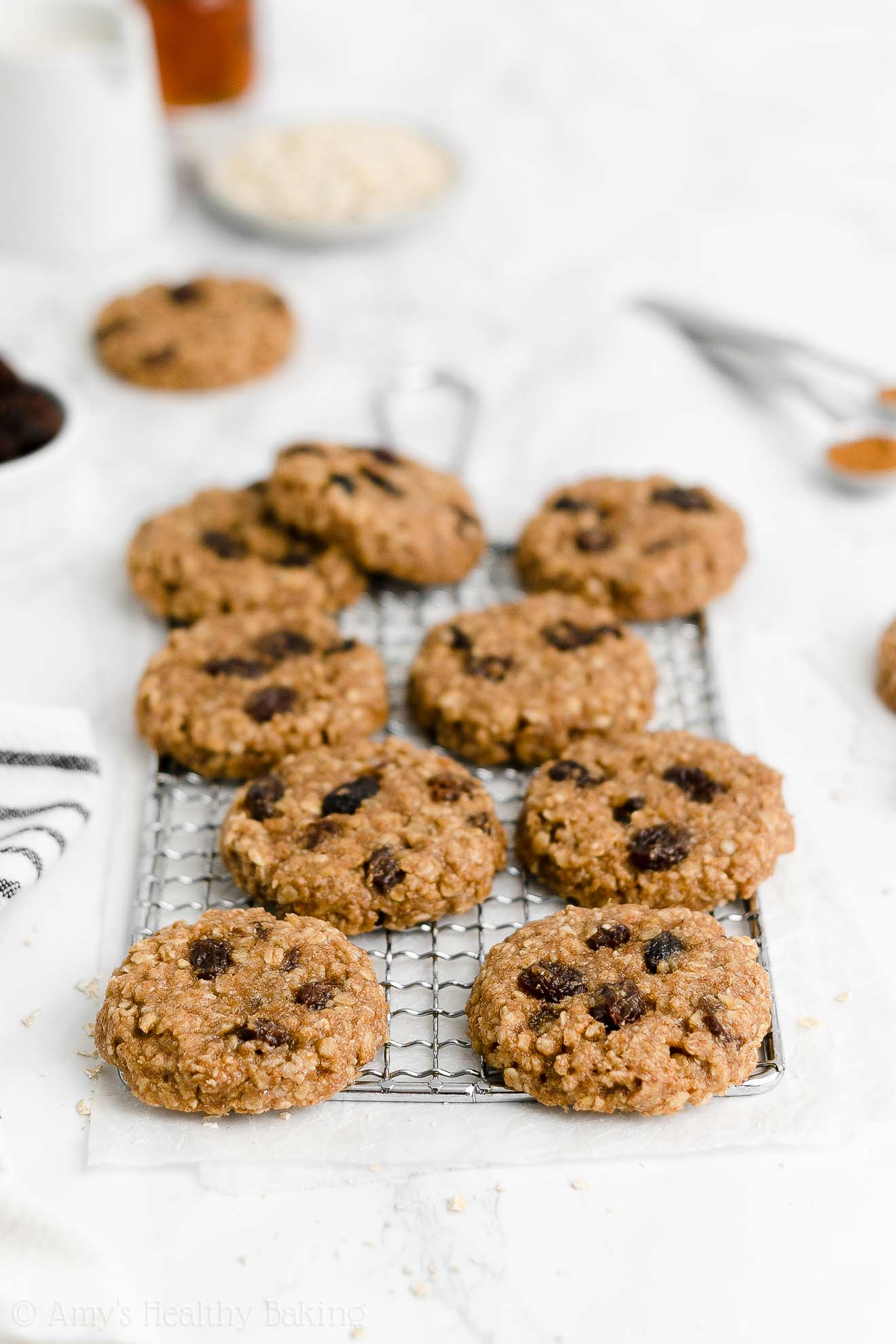 ULTIMATE Best Healthy Weight Watchers Vegan Flourless Oatmeal Raisin Cookies