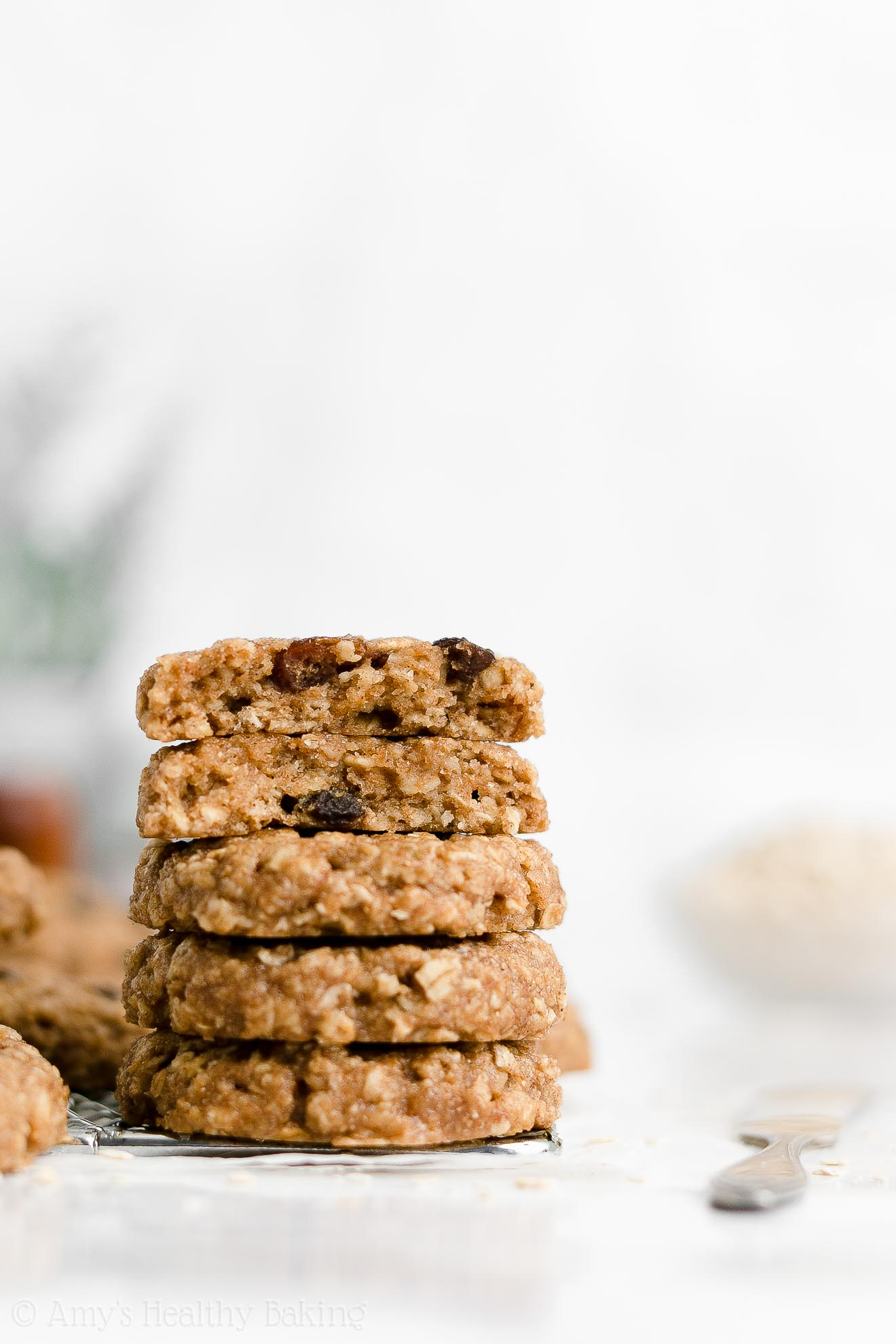 Best Soft Chewy Healthy Applesauce Egg Free Flourless Oatmeal Raisin Cookies