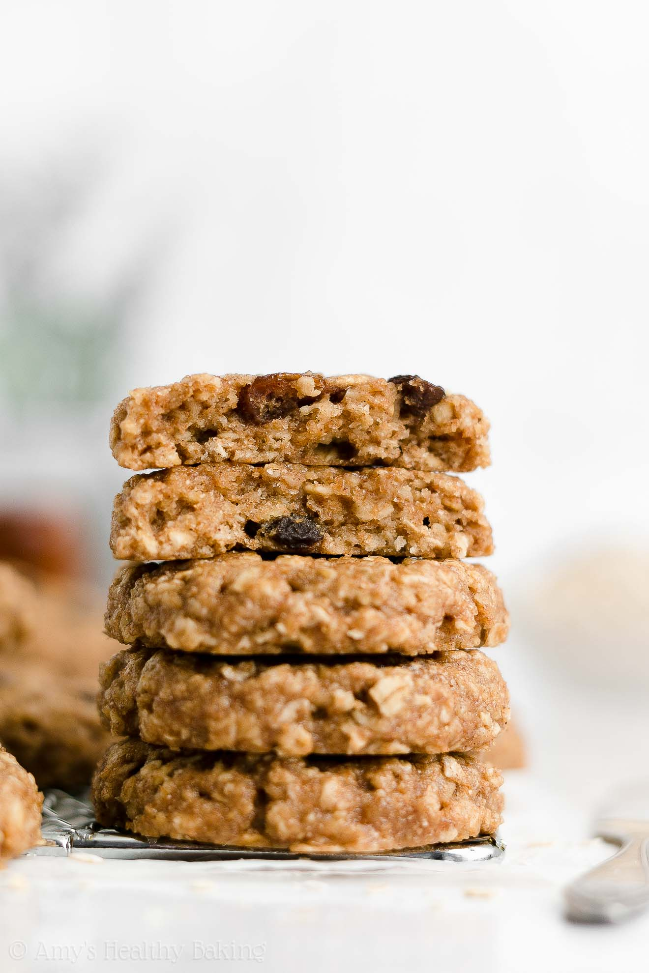Healthy Low Calorie Vegan Gluten Free Flourless Oatmeal Raisin Cookies No Sugar