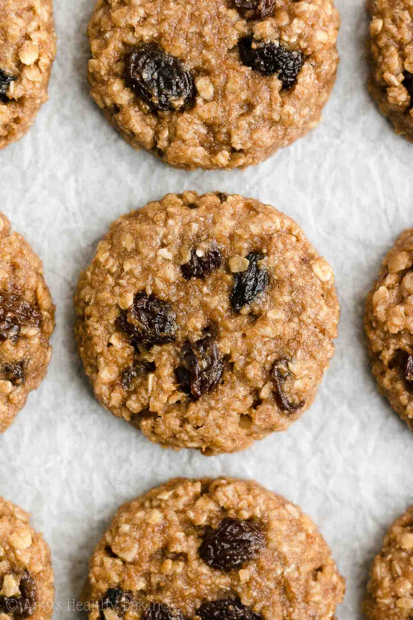 Best Ever Easy Healthy Classic Vegan Flourless Oatmeal Raisin Cookies with Applesauce