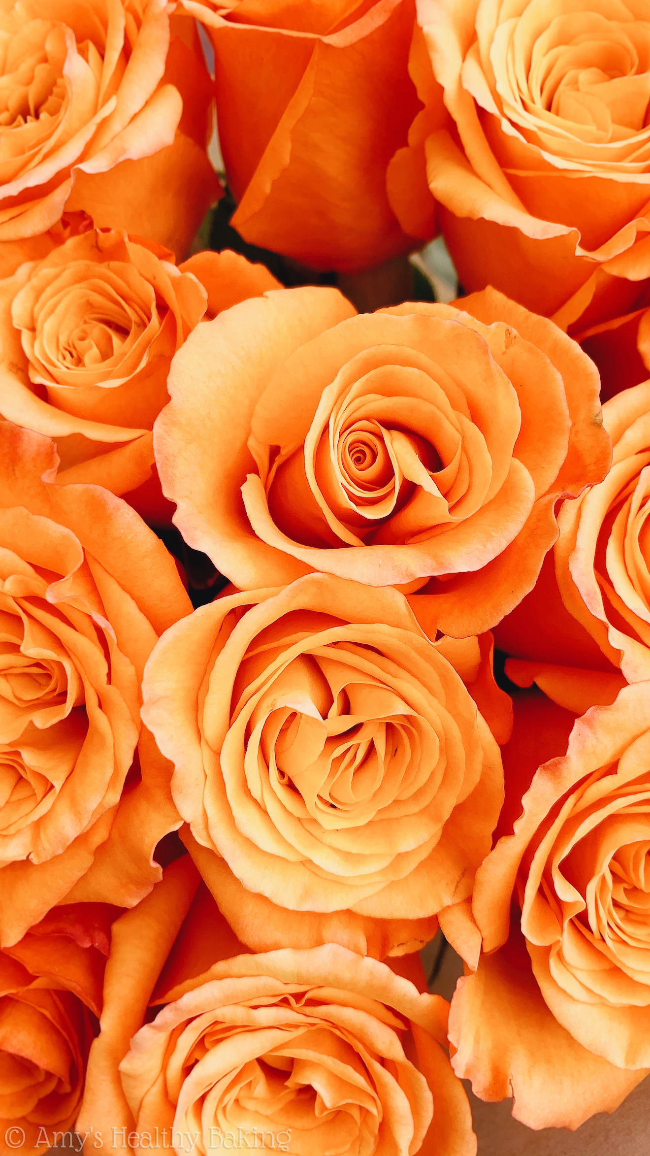 a bouquet of pastel orange roses
