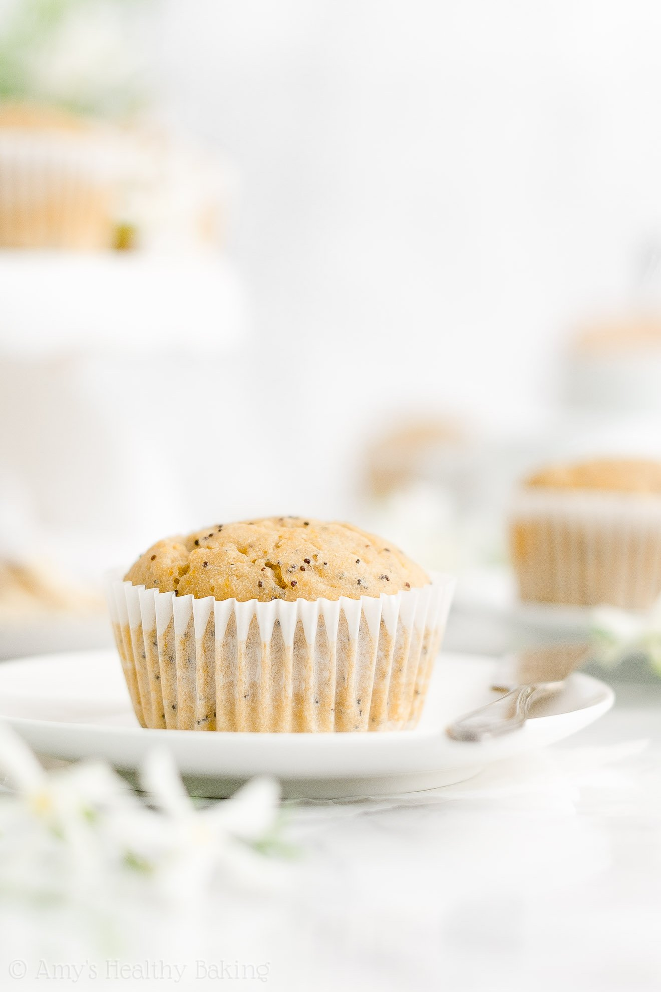 Best Ever Easy Healthy Gluten Free Sugar Free Moist Lemon Poppy Seed Muffins