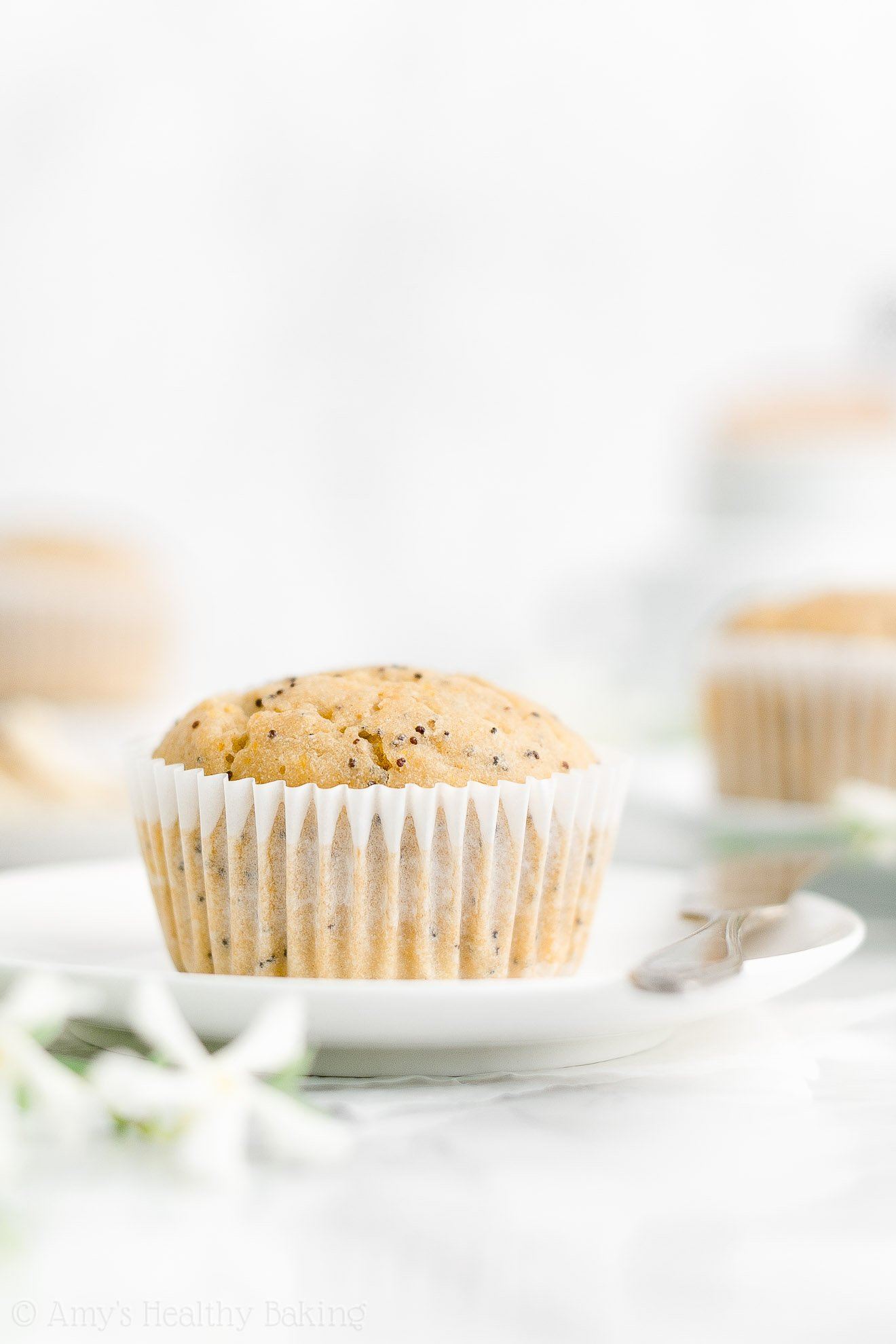 Best Easy Healthy Homemade Low Calorie Dairy Free Lemon Poppy Seed Muffins