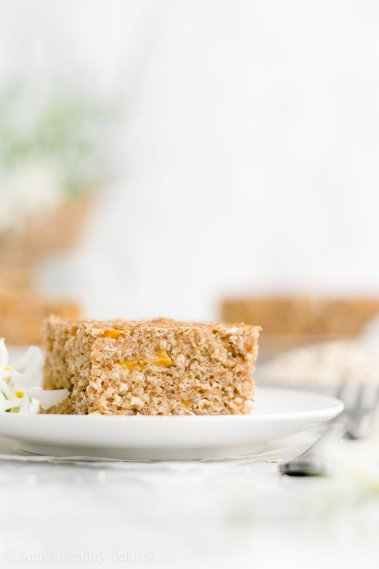 Easy Healthy Weight Watchers Low Calorie Fresh Peach Oatmeal Breakfast Cake
