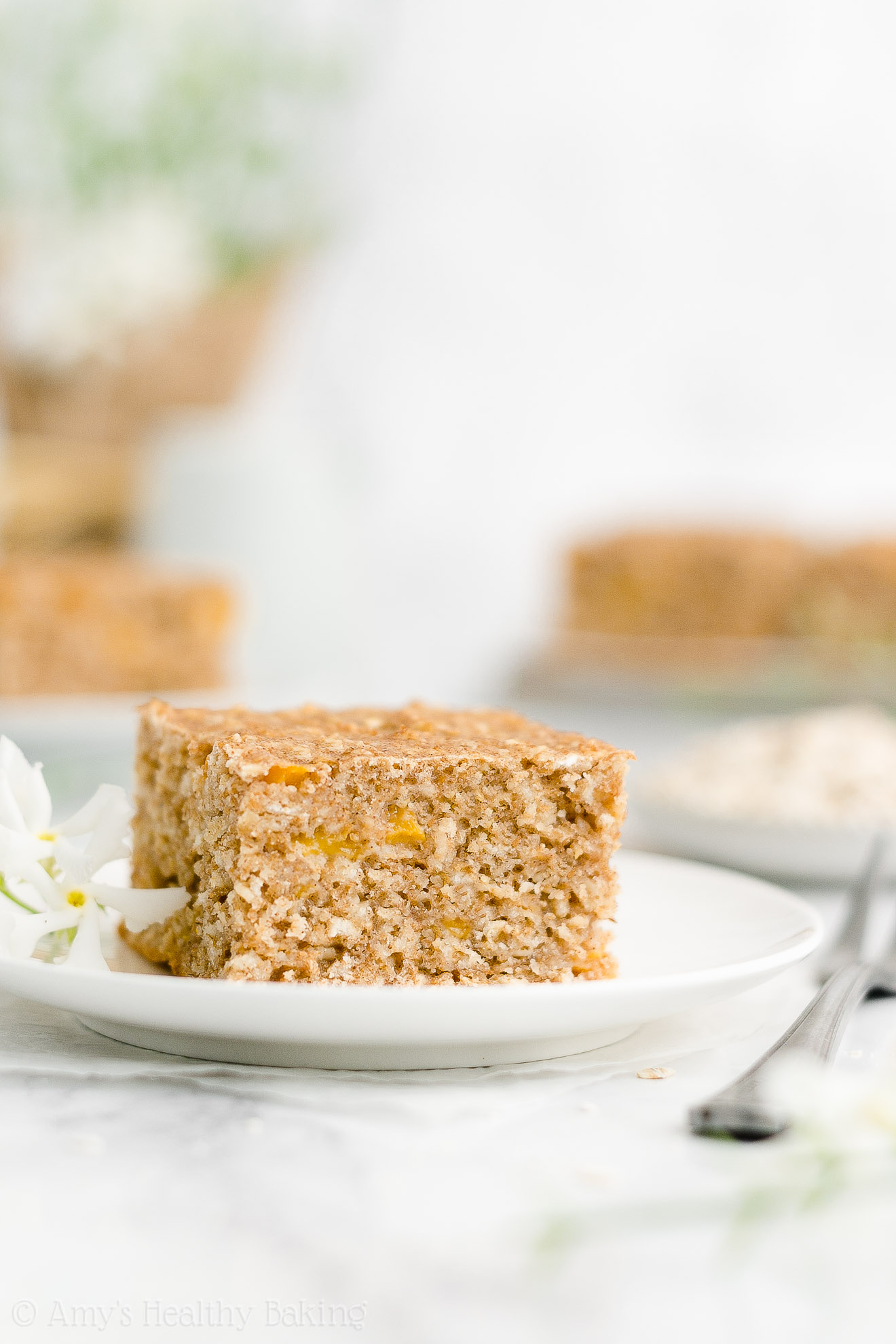 Easy Healthy Low Fat Gluten Free Greek Yogurt Fresh Peach Oatmeal Snack Cake