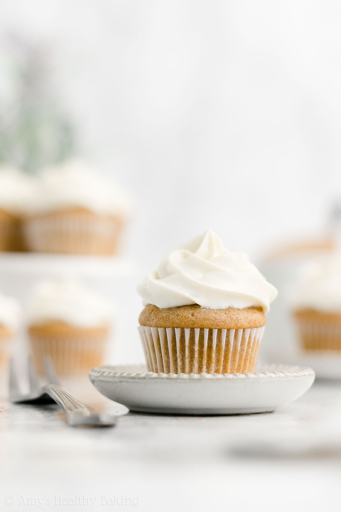 Best Easy Healthy Low Sugar Gluten Free Moist Mini Snickerdoodle Cupcakes