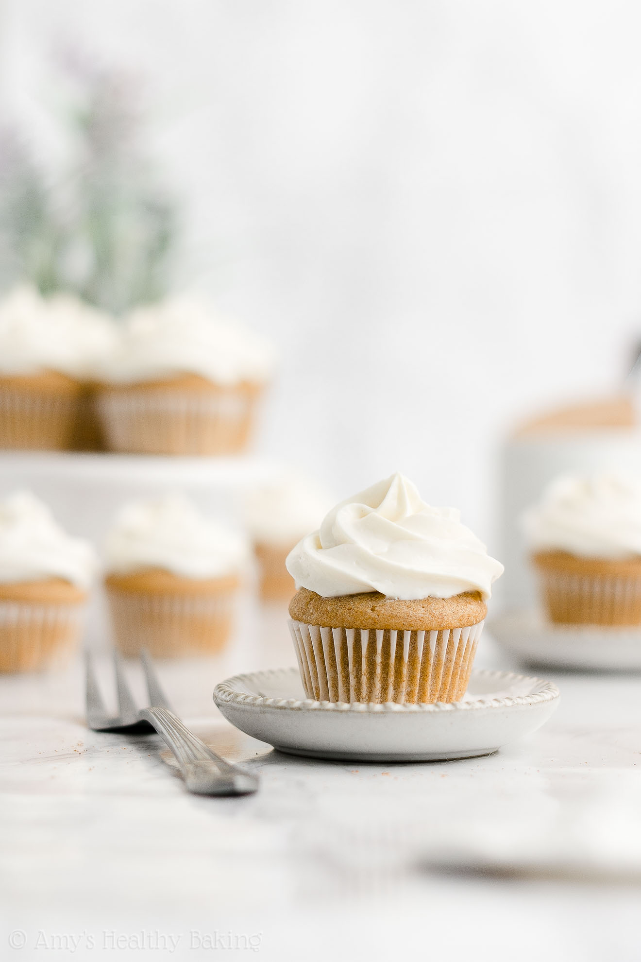 Healthy Weight Watchers Mini Snickerdoodle Cupcakes with Cream of Tartar