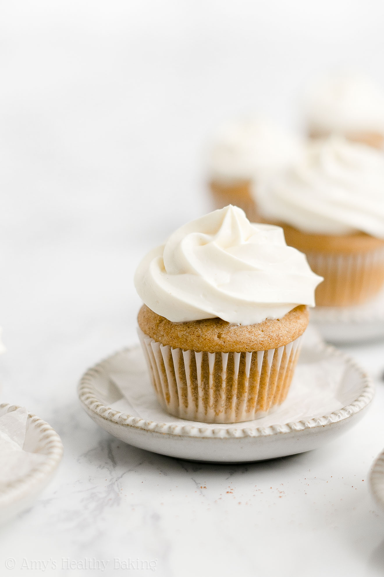 Healthy Weight Watchers Sugar Free Low Fat Mini Snickerdoodle Cupcakes