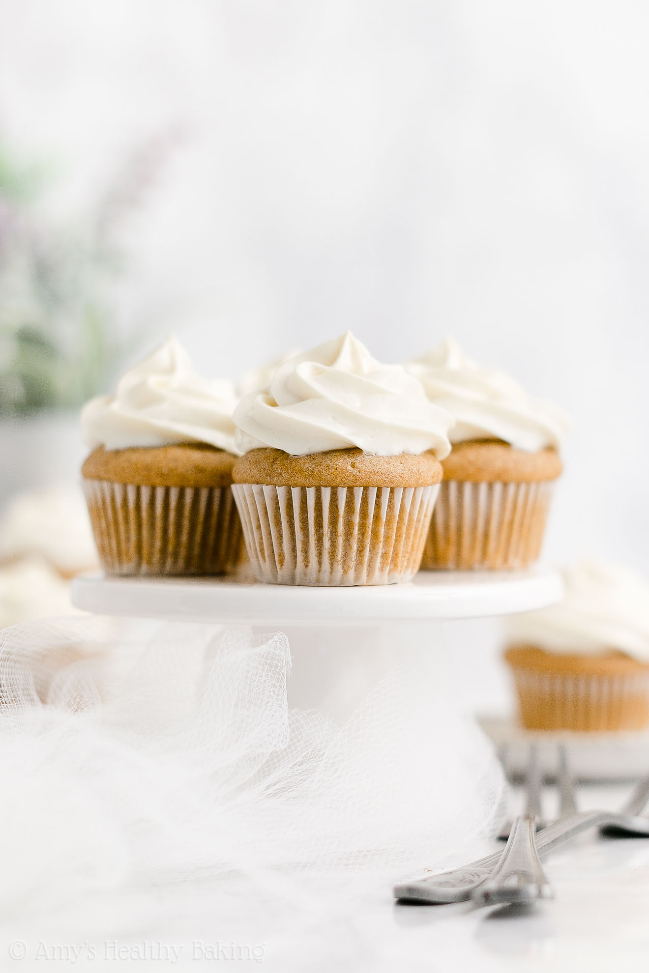 Healthy Clean Eating Whole Wheat Low Calorie Mini Snickerdoodle Cupcakes
