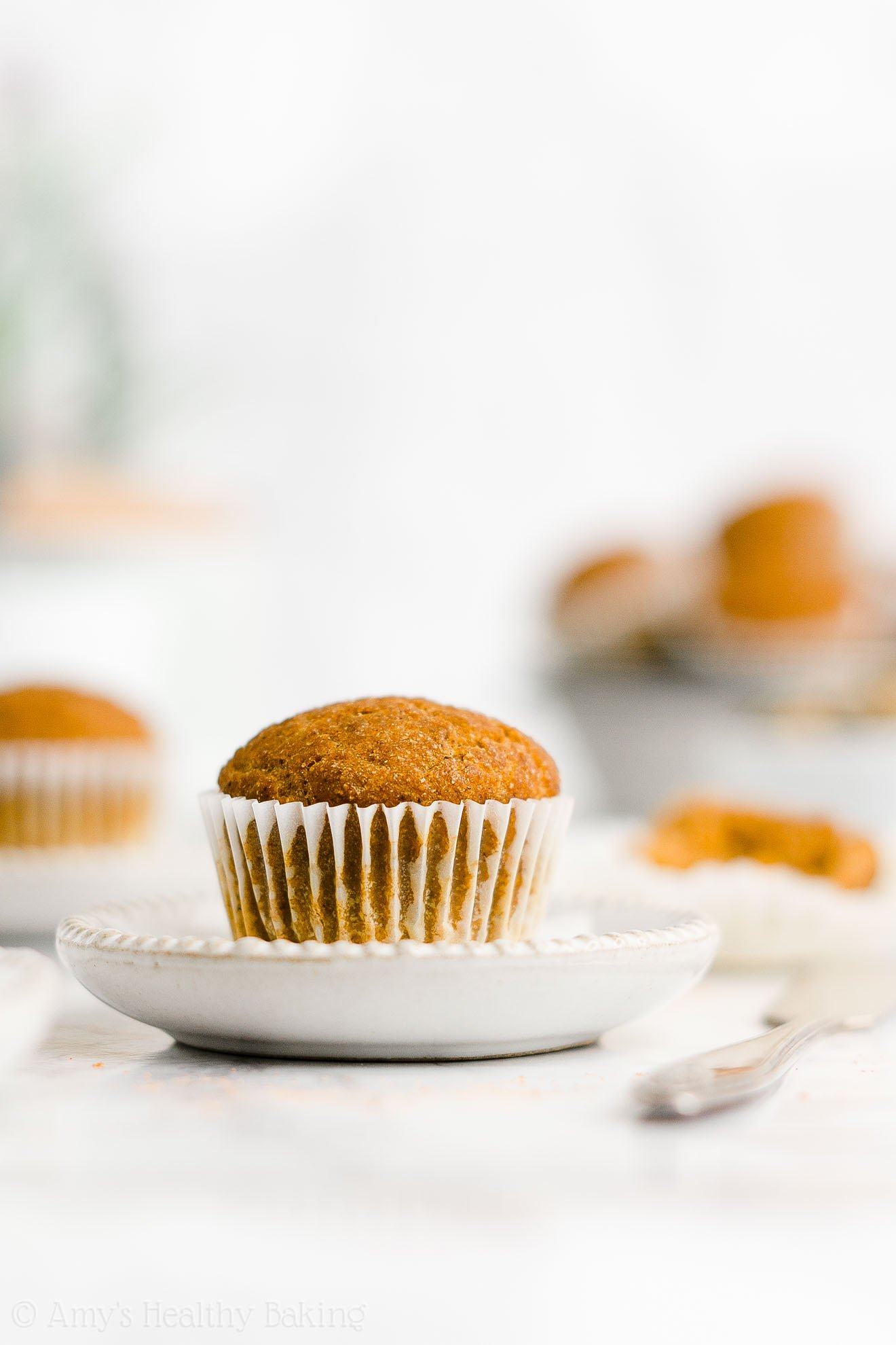 Best Easy Healthy Moist No Sugar Gluten Free Vegan Pumpkin Mini Muffins